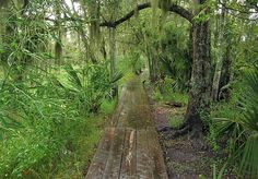 8 real pirate havens worth a visit | Jean Lafitte National Historical Park and Preserve | Barataria, Louisiana