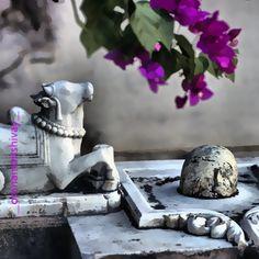 "।। ॐ नम: शिवाय ।। #shivlinga #nandi #lingam #shankar #shiv #bhole #brahmanda #parmeshwar #shivshakti #mahadev #omnamahshivay #beginandend #vibhovishvamurtey #om ""A characteristic sign by which one can recognize something is known as his Linga. Sivalinga is a *sign* which recognizes the Supreme God Siva."" ...Shiv MahaPuran हर हर महादेव"