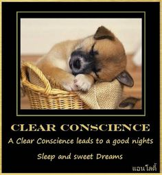 60 Best Clear Amp Clean Conscience Images Thinking About