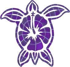 Turtles!!