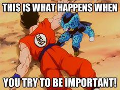 K Den Meme ... Ball Z & Dragon Ball Memes [Gallery] : The Lion's Den University