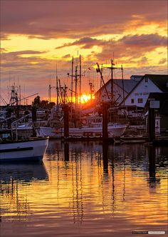 Harbour Sunset - Steveston, BC, Canada. Lived/worked on a boat here for a while.