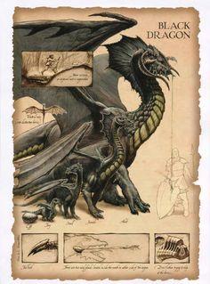 draconomicon black