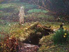 St Oran's Well, Colonsay, Western Highlands