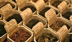 Tipos de té y propiedades | Mytea - El arte del Té