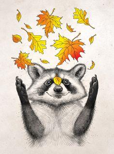 raccoon, leaves, autumn, art...