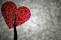 Bir duruşu olmalı insanın; bir bakışı, bir anlayışı, bir aşkı, bir davası olmalı.  | Cahit Zarifoğlu