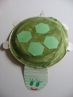 tortuga con un plato de carton