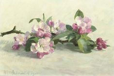 Henk Helmantel, Apple Blossom