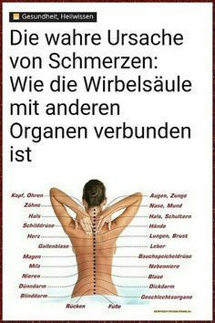 Cause of pain. How the spine is connected to other organs. - Cause of pain. How the spine is connected to other organs. Informations About Ursache von Schmerzen. Health And Wellness Quotes, Wellness Tips, Health Fitness, Fitness Workouts, Fitness Motivation, Massage Tips, Wellness Massage, Salud Natural, How To Stay Healthy