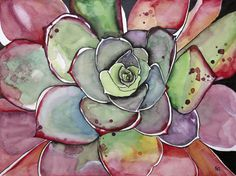 Succulent Original Paintings Fine Art Pink Agave Artwork for Sale