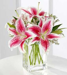Birthday Flowers - Pink Lily Bouquet by FTD - This sweet bouquet is an expression of your love and affection. Fragrant pink Stargazer lilies are accented with pink statice and arranged in a clear glass vase. Send it just because you care. My Flower, Beautiful Flowers, Lilly Flower, Flower Tower, Flower Beds, Lys Rose, Lily Centerpieces, Flower Centrepieces, Flowers Online