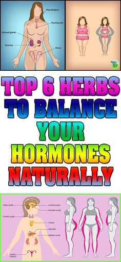 TOP 6 HERBS TO BALANCE YOUR HORMONES NATURALLY