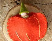 Pumpkin Baby in Pouch