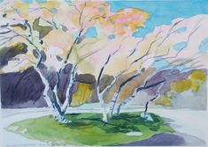 Small original watercolour painting of spring landscape, unknown blossom tree, Humber River park, spring day, glorious weather (Canadian artist, Toronto) Watercolour Paintings, Watercolor, River Park, Spring Landscape, Blossom Trees, Spring Blossom, Canadian Artists, Spring Day, Toronto