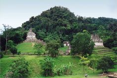 Palenque was a Maya city state in southern Mexico that flourished in the 7th century. The Palenque ruins date back to 226 BC to its fall around 1123 AD.  Bob lives to expound anything Mayan Twitter @ChichenItza Bob