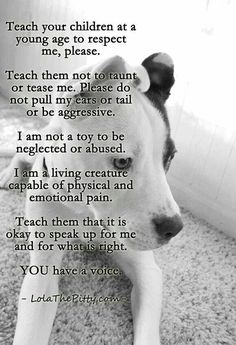 teach respect for all pets, they are not your child's toy. . . . . '''''Little kids from the house that was behind me used to put their hands through the fence and tease and hit my pit. My mom even told their parents to watch them and not to let them do it anymore, they did NOTHING about it. One day, she got fed up and bit them, their parents called the pound. My dog got taken away for trying to protect herself. PLEASE DO NOT BE SO IGNORANT!!!