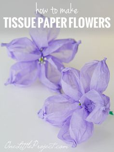 Tissue paper flowers tutorial - These look just like balloon flowers! Here are step by step instructions to make tissue paper flowers that look just like balloon flowers. These are so pretty! Handmade Flowers, Diy Flowers, Fabric Flowers, Flower Garlands, Real Flowers, Purple Flowers, Balloon Flowers, Tissue Paper Flowers, Paper Roses