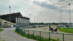 Horse race track,  Seinäjoki, South Ostrobothnia province of Western Finland. - Etelä-Pohjanmaa,