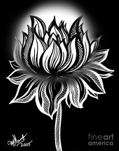 Lotus Drawing - White Lotus Of Wisdom. And Light by Sofia Metal Queen Canvas Prints, Framed Prints, Art Prints, Lotus Drawing, Lights Artist, White Lotus, Wood Print, Beaded Embroidery, Tribal Tattoos