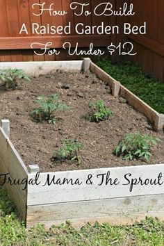 """How to build a raised bed garden for under $12! When I first started researching raised garden beds, I was in shock at the pricing of those """"raised garden bed kits"""" you can buy, I thought there had to be a cheaper way. I found it!"""