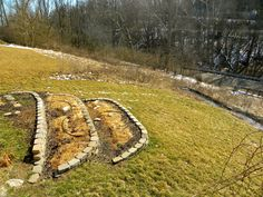 Terraces and Swale Earthworks at Parkwalk Permaculture
