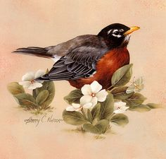 MIGHTY ART DEMOS -- Sherry C. Nelson, Painting Songbirds