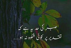 Saaadddiii Urdu Quotes, Poetry Quotes, Urdu Poetry, Islamic Quotes, Quotations, Heart Touching Shayari, Islamic World, Dear Diary, Motivational Quotes
