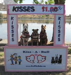 Pits for kids with disabilities... So sweet