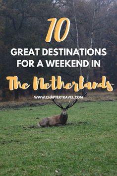 Looking for a fun trip in the Netherlands? In this post you can find 10 places for a weekend trip in the Netherlands! European Travel Tips, European Vacation, Europe Travel Guide, Spain Travel, Travel Guides, Travelling Europe, Croatia Travel, Hawaii Travel, Italy Travel