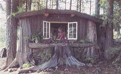 Tree Stump Home:  Using cedar stumps that washed ashore for siding, this small home blends into the background.