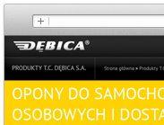 Dębica | www.parastudio.pl