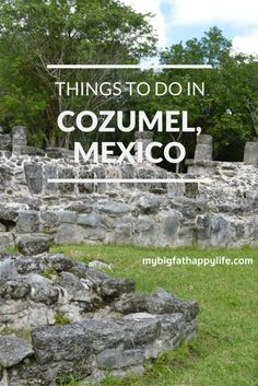 I had never been to Mexico before our Disney cruise last month. I did know that Mexico has Mayan ruins and I have been wanting to see the ruins for awhile, so ourexcursion included San Gervasio. We also saw and tasted chocolate at the Mayan Cocoa Company and had lunch at Discover Mexico. San Gervasio [...]