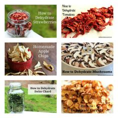 how to dehydrate food in a nesco food saver