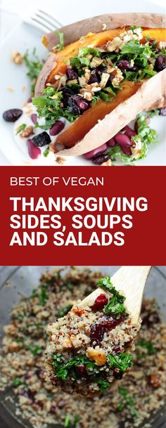 Thanksgiving soups, salads and sides for your holiday dinner. Plant based side dishes are dairy free, meatless and egg free. #thanksgivingsides #plantbased #dairyfreerecipes Sweet Potato Pecan, Salad With Sweet Potato, Vegan Recipes Beginner, Best Vegan Recipes, White Bean Puree, Cranberry Quinoa Salad, Vegan Thanksgiving Dinner, Pumpkin Mac And Cheese, Dairy Free Soup