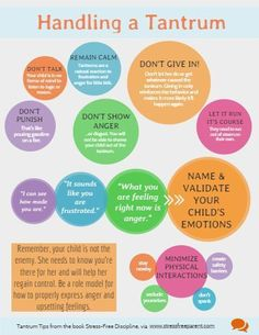 Tips for how parents can handle a Temper Tantrum using positive parenting! Found on http://infograph.venngage.com, repined by Proactive Parenting dot net.