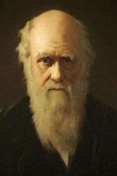 A Georgia congressman who attacked the theory of evolution found himself with an unlikely opponent in Tuesday's U. election, when voters in one county cast write-in ballots for the century father of evolution, British naturalist Charles Darwin. Shrewsbury England, Darwin Theory, Theory Of Evolution, Charles Darwin, British History, Popular Culture, Black People, Anthropology, Georgia