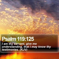 Psalm 119:125 I am thy servant, give me understanding, that I may know thy testimonies. (KJV)  #Redemption #Water #Holy #Light #Photography #JesusSaves #LockScreenDownload http://www.bible-sms.com/