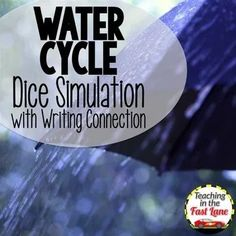 Water Cycle Activities Dice Simulation with Writing Connection 6th Grade Science, Science Curriculum, Science Classroom, Science Fun, Water Cycle Activities, Nitrogen Cycle, Lessons For Kids, Teaching, Writing