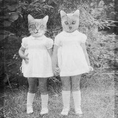 Kissa ja kettu tytöt