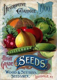 28 Best Vintage Seed Packets Vegetable Amp Fruit Images In