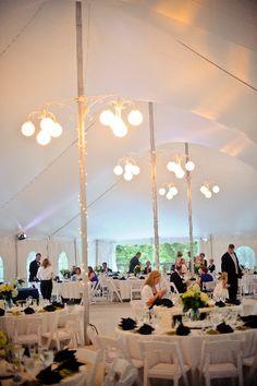 Wedding reception at Rust Manor House. Leesburg, VA