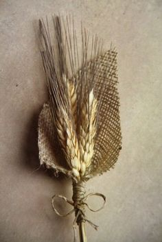 Wheat And Burlap Boutonniere1 A Thanksgiving Wedding Feast