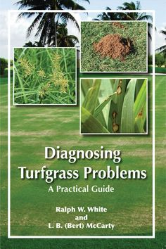 Diagnosing Turfgrass Problems: A Practical Guide    $25.00      Diagnosing Turfgrass Problems:A Practical Guide TMCI 1    Ralph W. White and L. B. (Bert) McCarty    This book provides a straightforward introduction to the fundamentals of turfgrass diagnosis for groundskeepers, golf course superintendents, sod farm managers, sports field managers, lawn care operators, landscapers, and other turf professionals.