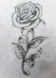 Rose - For the back of my right calf..