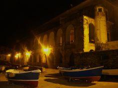 Gatte di notte...  [Cilento, Santa Maria di Castellabate]