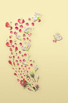 Small Delicate Petals Arranged Into Beautiful Floral Paintings - My Modern Metropolis