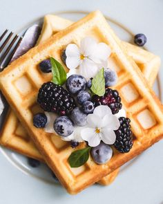 This recipe for healthier Belgian waffles will bring your brunch to the next level! They're delicious, crispy, and make with healthy ingredients! Waffle Recipes, Brunch Recipes, Belgium Waffles, Healthy Waffles, Bubble Waffle, Healthy Brunch, Food Platters, Pancakes And Waffles, Aesthetic Food