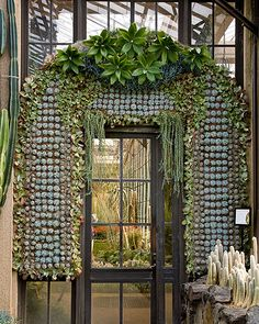 Living wall with a door- a girl can dream
