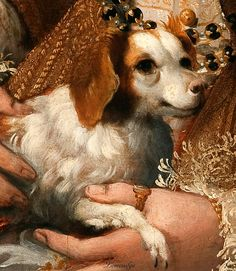 Lavinia Fontana, Portrait of a Lady with a Dog, detail